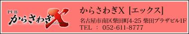 からさわぎX[エックス]